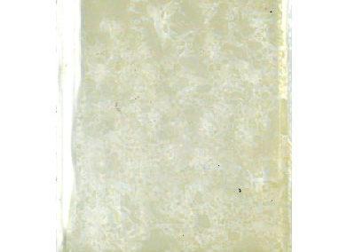 Vetrino1